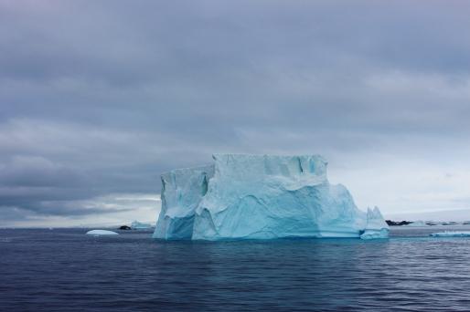 7. Iceberg Copyright Natalia Messer